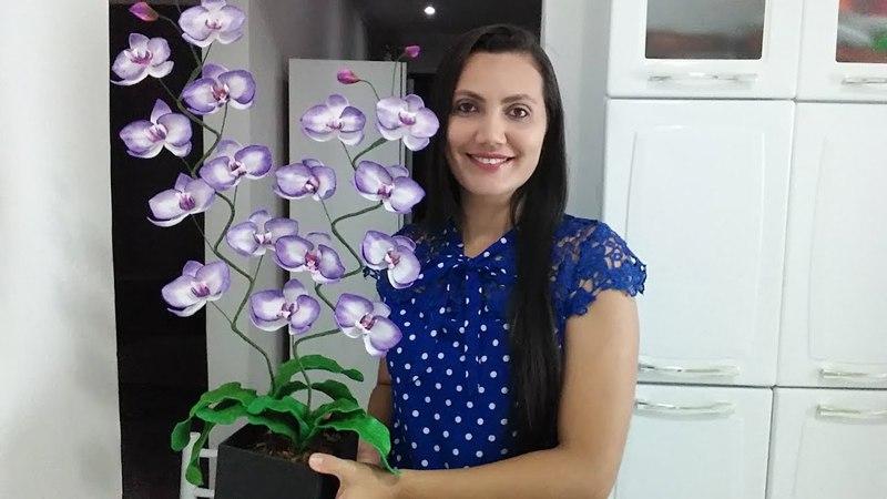 Orquídea sem frisador lilás!