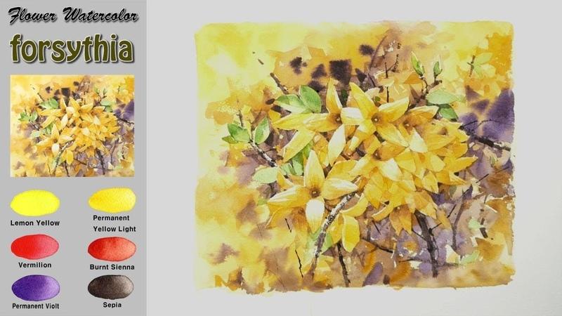 개나리-봄꽃 수채화그리기(wet-in-wet. 아르쉬 황목)[남일수채화] Forsythia-Spring flowers watercolor.NAMIL ART