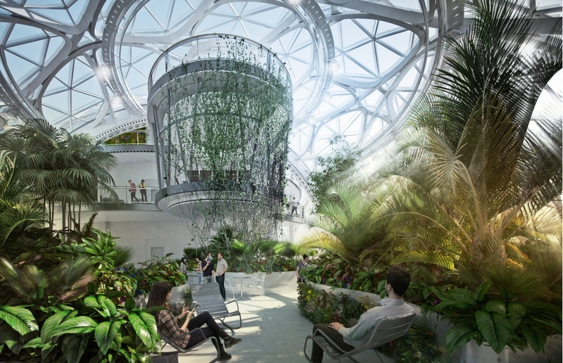 Новый офис Амазон представляющий собой гибрид зимнего сада