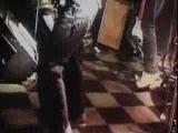 Бонус концерт и клип аниме Берсерк