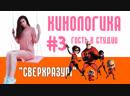 СУПЕРСЕМЕЙКА-2 I КиноЛогика 3 Гость в Студии