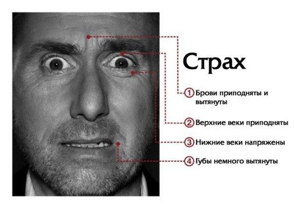 Как понять мысли и чувства по выражению лица  7 базовых микровыражен