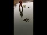 Рыбачка Норка