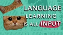 How to Learn a Language: It's all about INPUT (Why most methods don't work)
