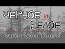 Чёрное_и_Белое_день_2
