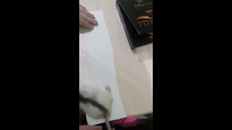 Тюбик - наш крыссс.Варвара решила его измерить;))
