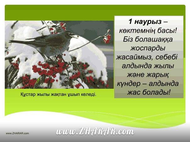 Реферат Жер Сілкінісі