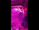 1200W Full Spectrum LED Grow Lights