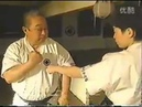 3 Major Schools of Okinawa Karate Uechi ryu Goju ryu Shorin ryu Vol 2