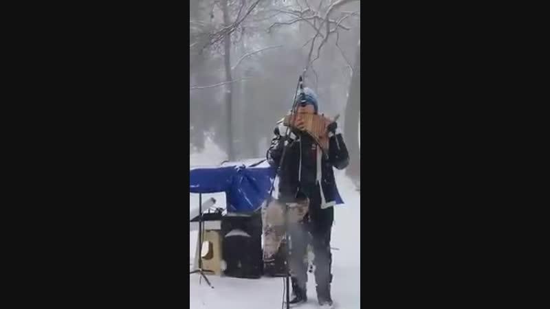 David solo - El condor pasa - Sumac Kuyllur Fanpage