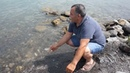 Приготовленная Жоржем рыба Сига на берегу озера Севан
