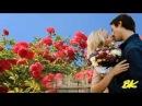und wieder werden rote Rosen blüh´n - Mariella