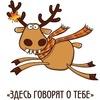 Подслушано | Александровская (Пушкинский район)