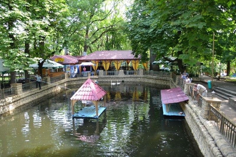 Картинки по запросу центральный парк ставрополь