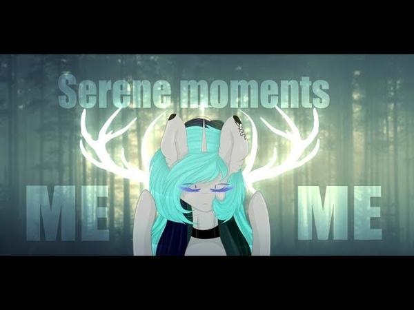 MEME►serene moments