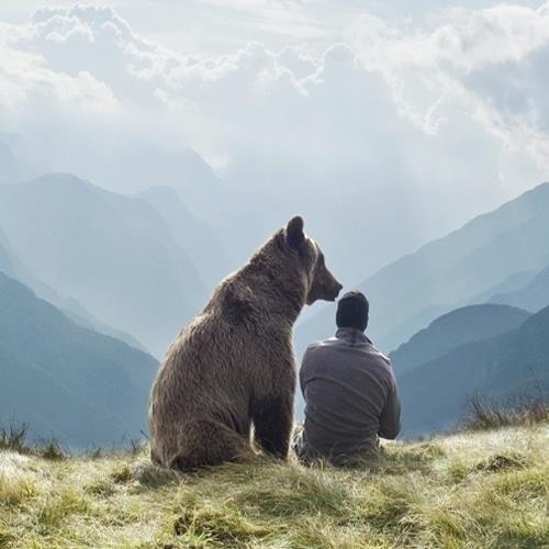Занимательные истории о животных ,фото... - Страница 13 P1RutRLlXxM