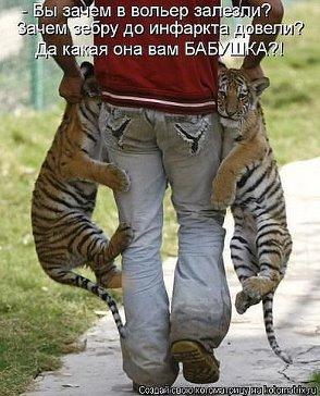 http://cs614916.vk.me/v614916324/1e5e2/F9o49TUAXTg.jpg