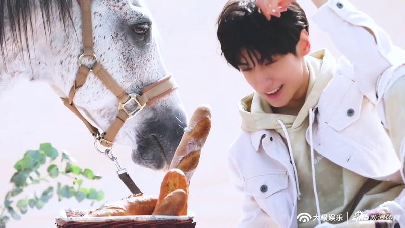 【罗云熙x偶像运动季 花絮4】警告要魂穿的,请放过小白马、胡萝卜、法26