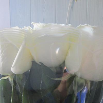 Алиса В-Стране-Чудес, 24 февраля , Оренбург, id220225799