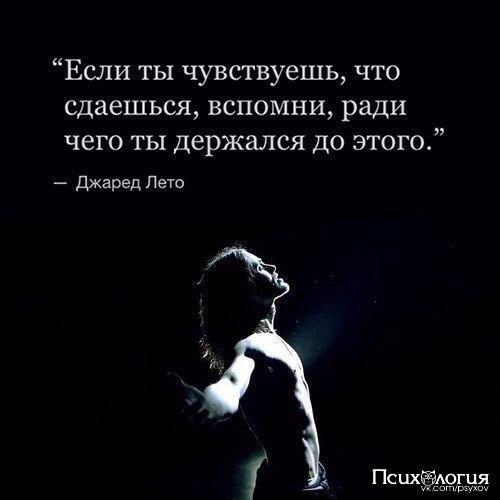 https://pp.vk.me/c543100/v543100758/3f566/Fh_JUc928zw.jpg