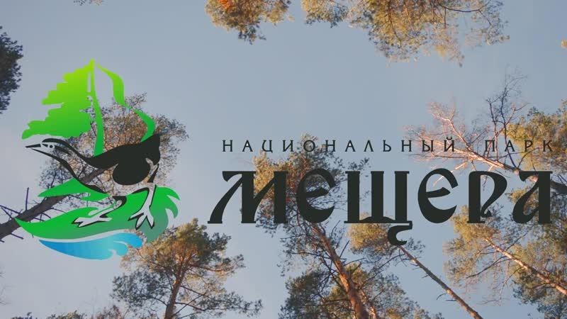 Национальный парк Мещёра