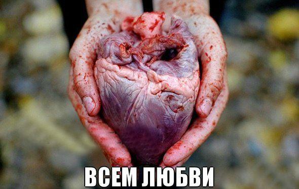 http://cs416729.vk.me/v416729044/5ac3/TDOwRQ97gos.jpg