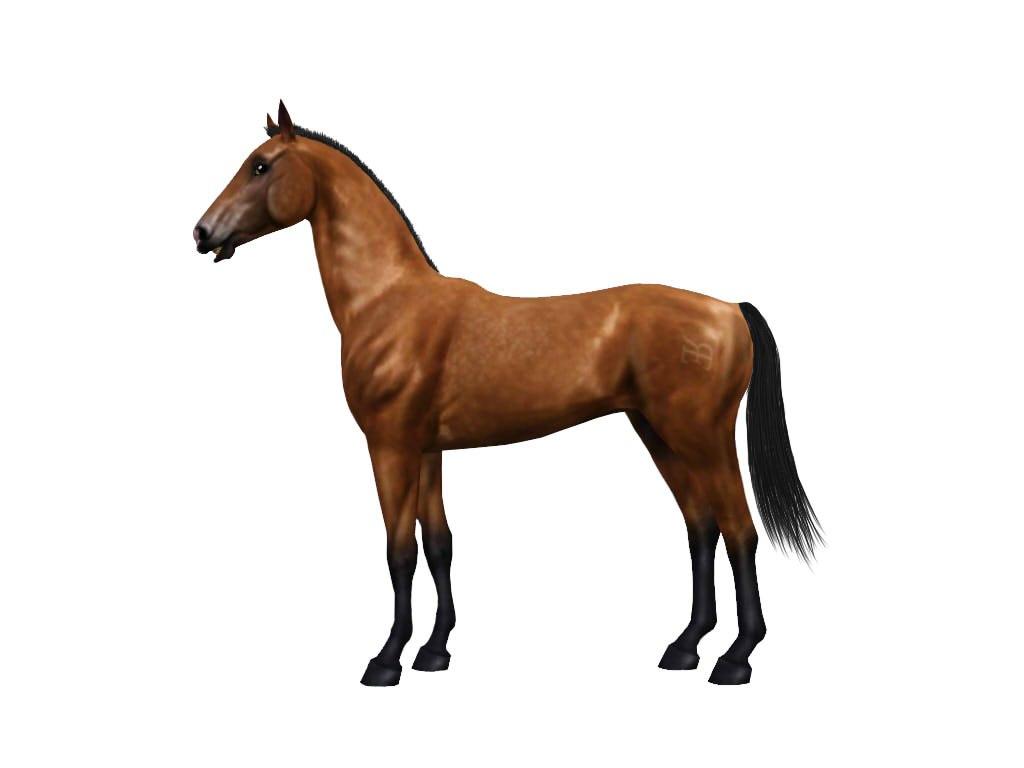Регистрация лошадей в RHF 1.1 - Страница 2 STv5bXZNLRU