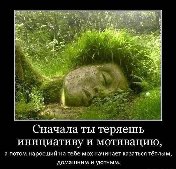 http://cs407929.vk.me/v407929051/5fcb/NUvSUoA_U3Q.jpg
