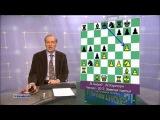 Шахматное обозрение 2013 Матч за звание чемпиона мира. Ананд - Карлсен (9 партия)