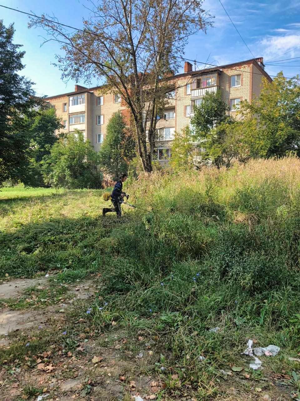 Скосили траву у проспекта Испытателей, 7