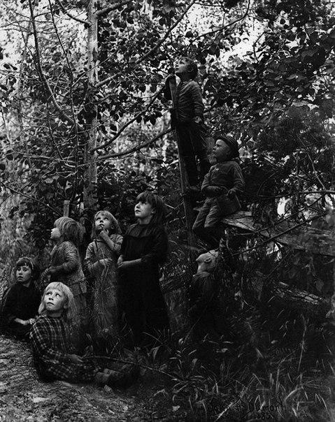 Дети слушают пение птиц, 1892 год.
