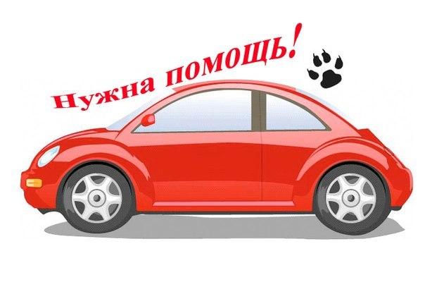 оби на родионова: