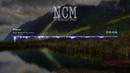Ship Wrek Mia Vaile - Pain No Copyright Music