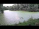 Лефортовский парк 1 mp4