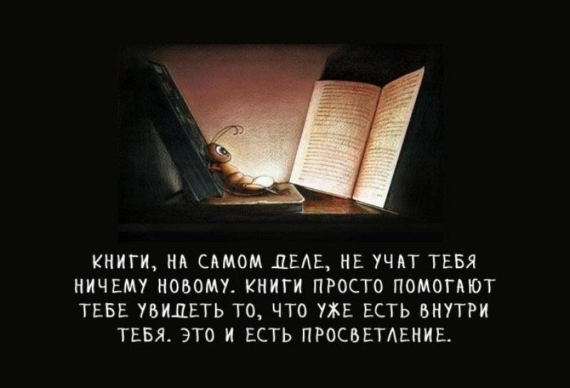 Друзья, а какую книгу вы читаете сейчас или прочли последней?
