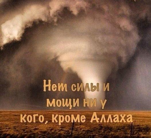 Фото №420130224 со страницы Абдулкадира Исакова