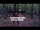 Rammstein Waidmanns Heil(guitar cover)