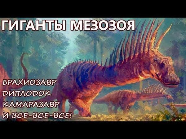 ДИПЛОДОК БРАХИОЗАВР и КАМАРАЗАВР Классификация динозавров ЗАВРОПОДЫ Часть 3