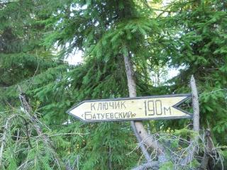 Летнее изобилие от Светланы Куприновой . Батуевский родник.