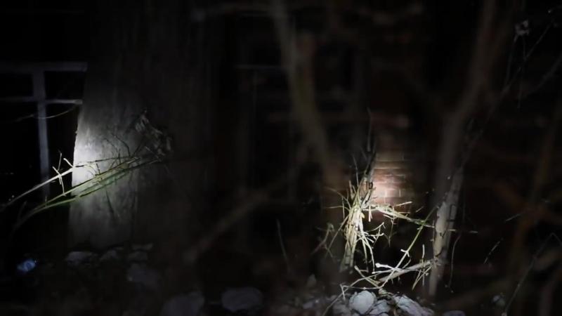 В поисках чёрного сталкера. Часть 2._Эпилог_Проявление полтергейста