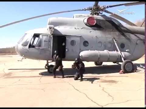 В Самарской области спецподразделения Росгвардии отработали навыки беспарашютного десантирования