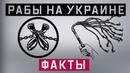 Рабы на Украине. Факты (Руслан Осташко)