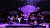 Imogen Heap - Tidal- Live Royal Albert Hall HD