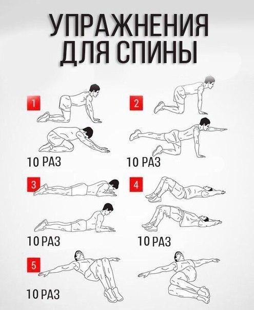 5 полезных упражнений для спины