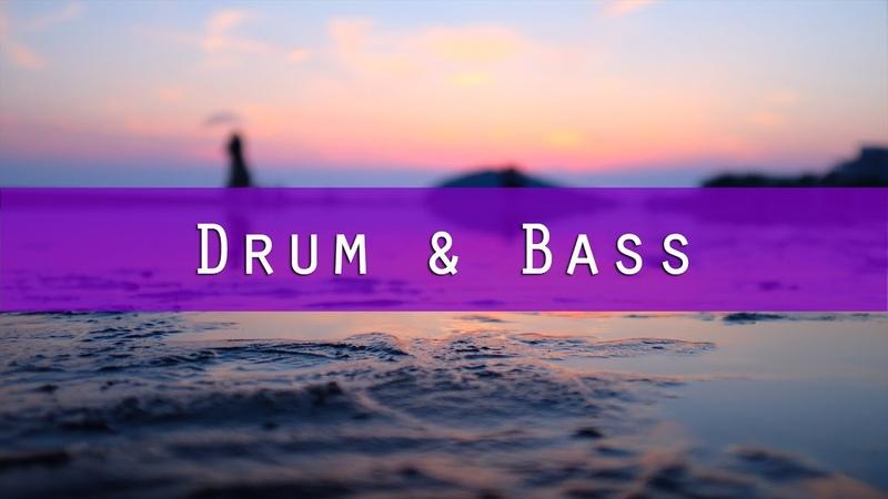 Indivision Moleman - Forgotten Past [Drum Bass]