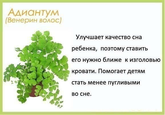 еще хочу)))))))