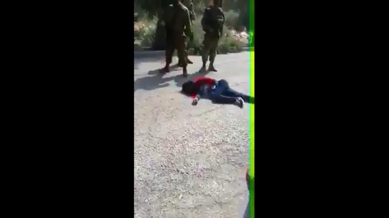 Палестинская девушка и израильские военные [Dagestan today]