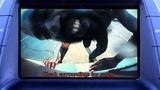 Death Grips - Double Helix
