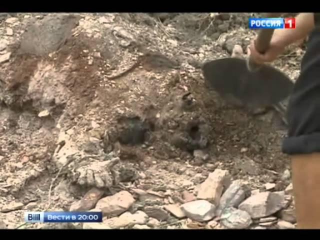 Пытки по-украински живых закапывают с мертвыми