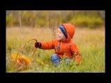 Autumn morning. by Anna Volkodav.